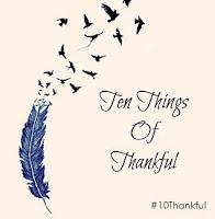 Carin's Gratitude Blog, TTOT, Gratitude Meme