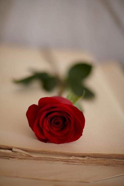 إمرأةٌ من الورد