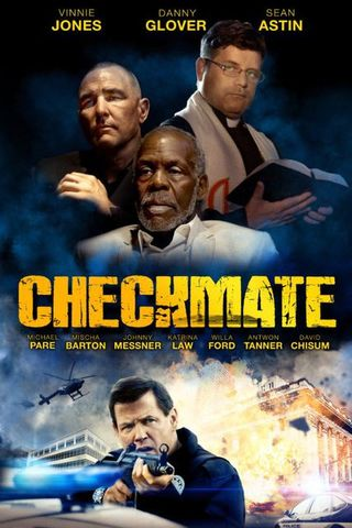 Checkmate 2015 Dual Audio Hindi 720p BluRay 800mb