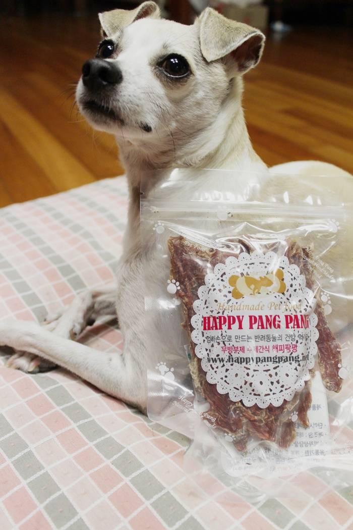 HAPPY Goes to Korean Dog Bakery