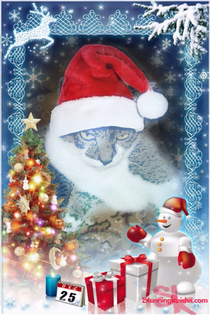 The Cat in the Santa Hat Art