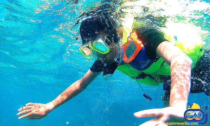 snorkeling di wisata pulau tidung