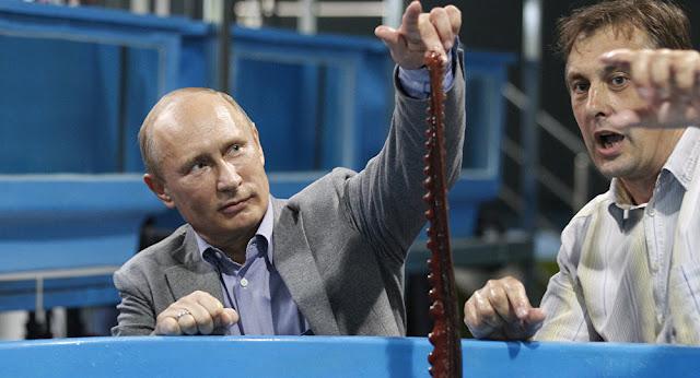 Se cree que los rusos tienen en su poder a la criatura