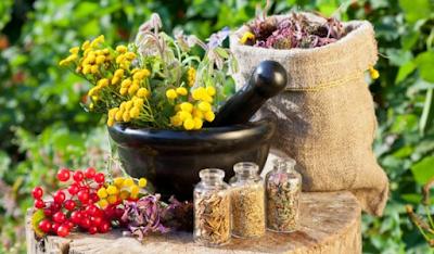 Cara Meracik Obat Herbal Yang Tepat