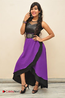 Telugu Actress Rachana Smith Stills at Money is Honey Audio Release  0060.jpg
