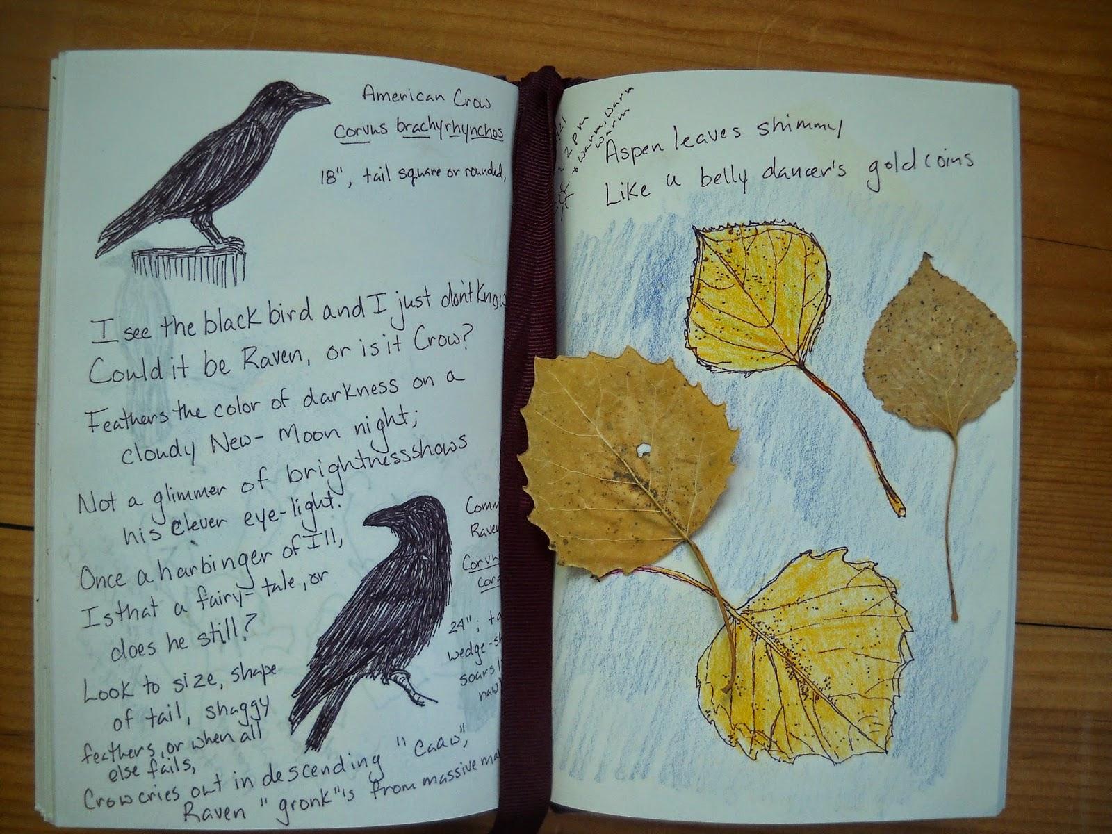 nature journaling journal children meditation remains