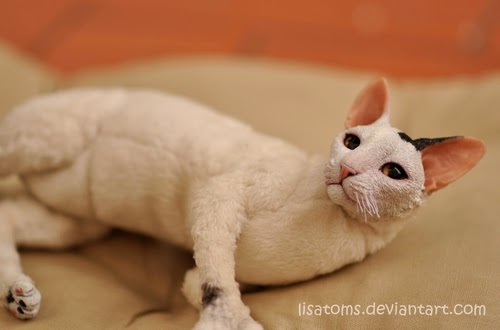 17-Cornish-Rex-Cat-Lisa-Toms-Maker-of-Mythical-Creatures-and-Pet-Dolls-www-designstack-co