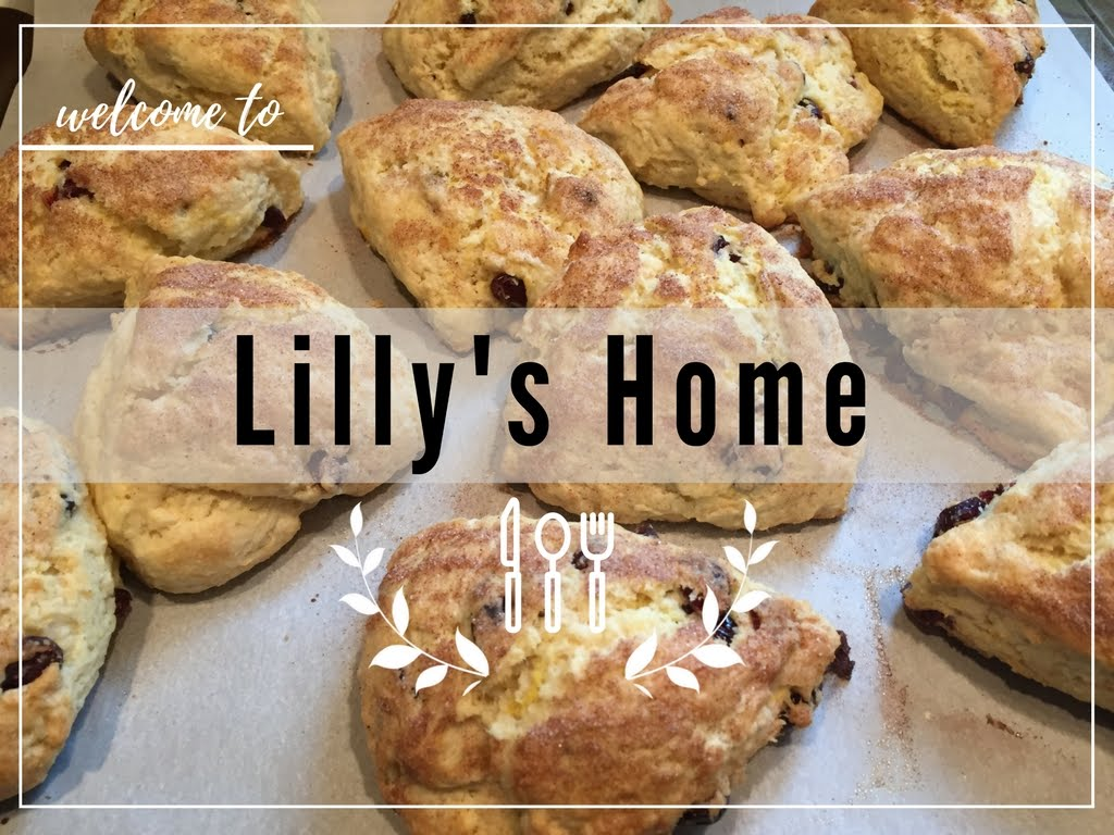 Lilly's Home Blog