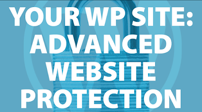 Website protection and security