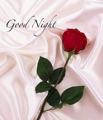 GOOD - NIGHT