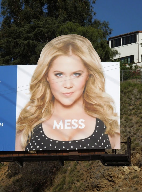 Inside Amy Schumer season 2 Mess billboard