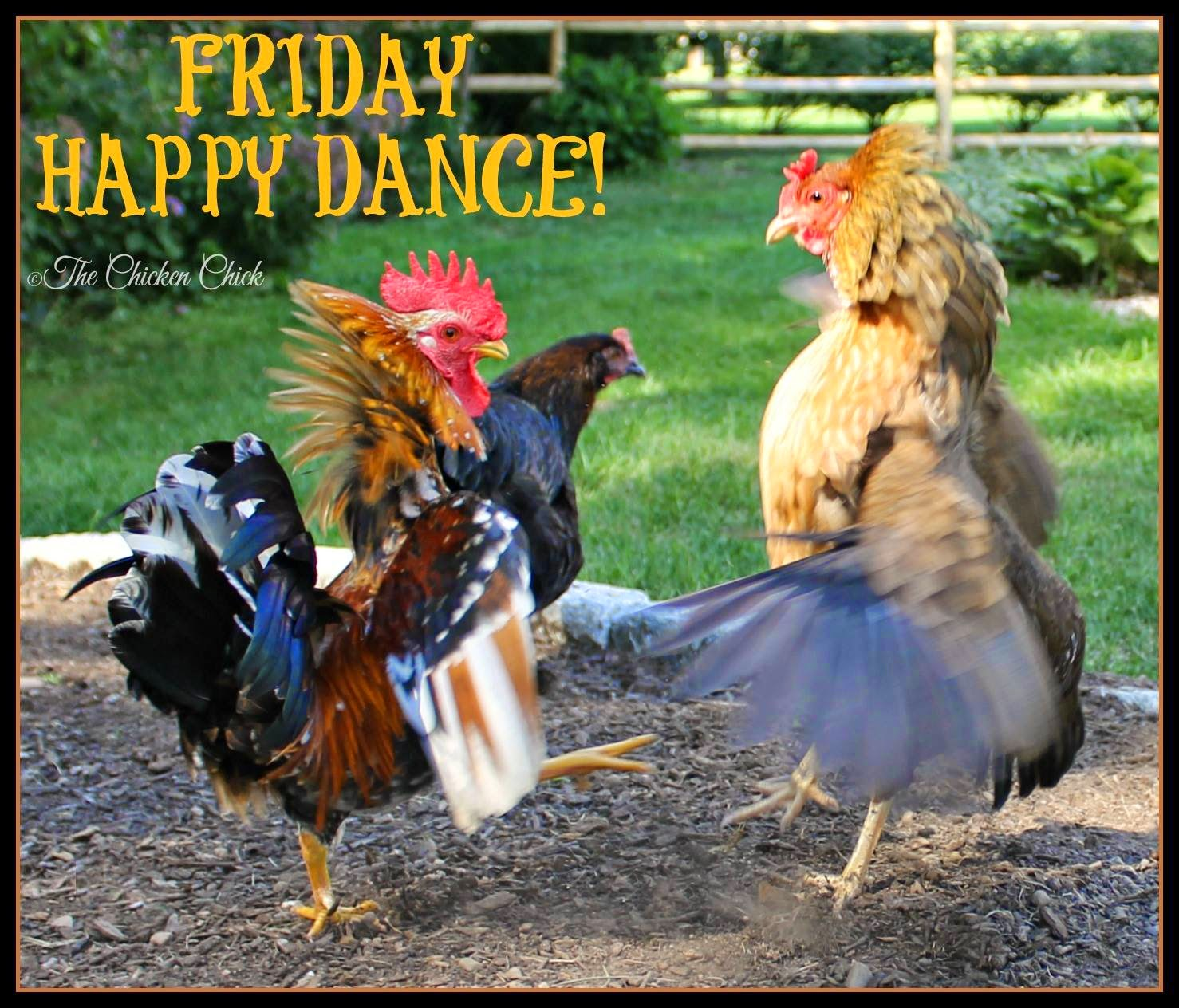 Friday Happy Dance!