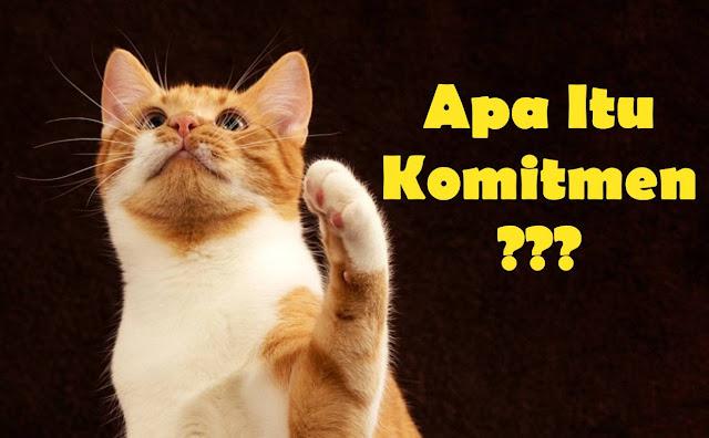 Gambar kucing sedang bertanya tanya