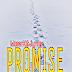 Morer K x Junay Promise|Download