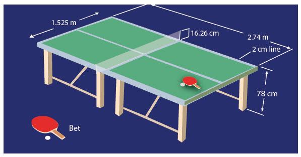 Lapangan Tenis Meja