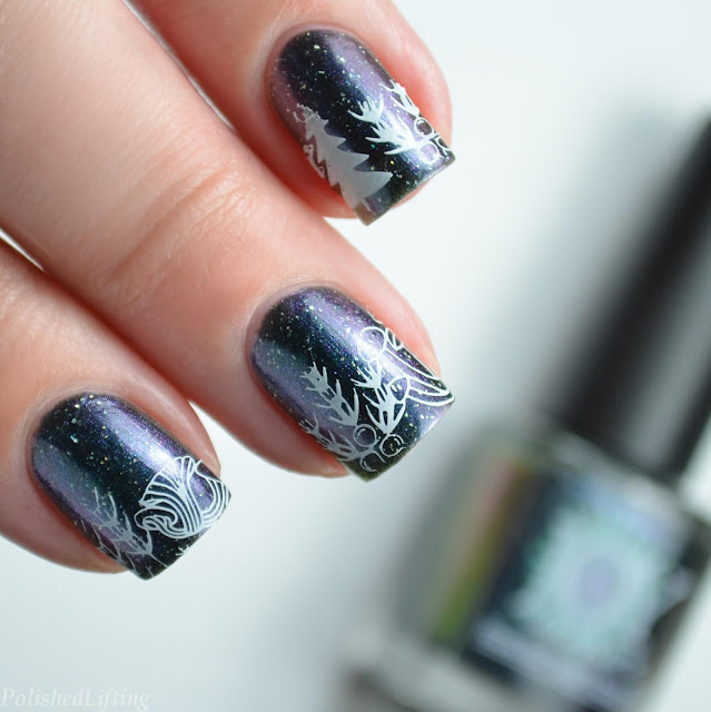 Ferns Evergreen Mushroom Nail Art