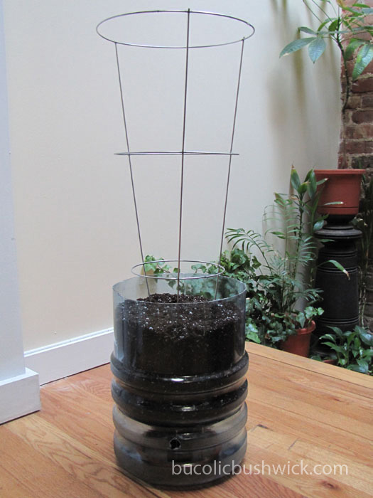 Bucolic Bushwick Diy Self Watering Container Water Cooler Bottle