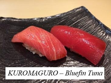 Kuromaguro (Bluefin tuna)