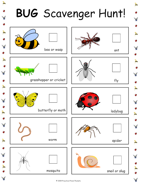 Insect, Bug, & Spider Themed {FREE} Preschool Printables ...