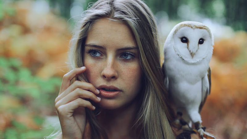 Blue Eyes Girl and White Owl HD