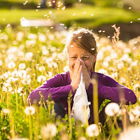 Alergi Serbuk Bunga