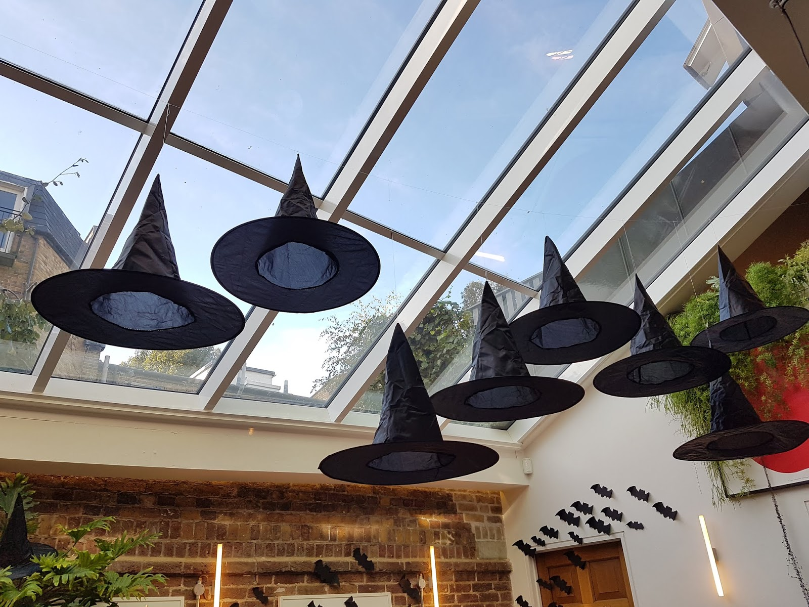 halloween witches hats