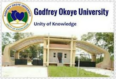 Godfrey Okoye University,