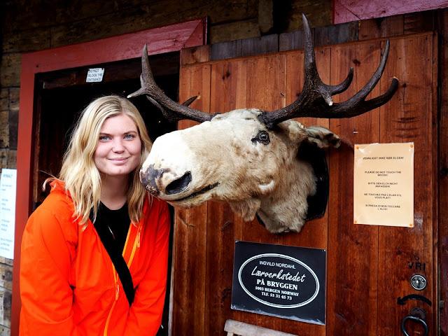Bryggen, Unesco, domy, domečky, architektura, Norsko, Bergen, los, maketa, zvířátko
