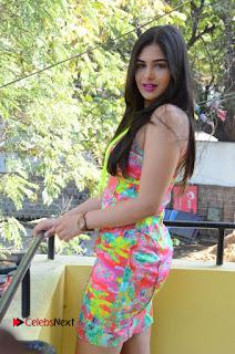 Telugu Actress Prasanna Stills in Short Dress at Inkenti Nuvve Cheppu Press Meet Stills  0069.JPG