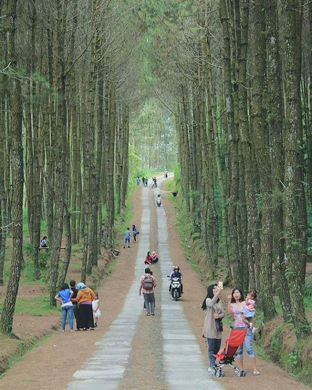Tempat-Tempat Menarik Wajib Pergi di Jogjakarta