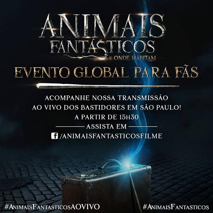 Traduzimos toda a live do Evento Global de Animais Fantásticos e você precisa ler isso