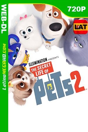 La Vida secreta de tus Mascotas 2 (2019) Latino HD WEB-DL 720P ()