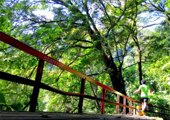 curug-lawe-jembatan-romantis-lari