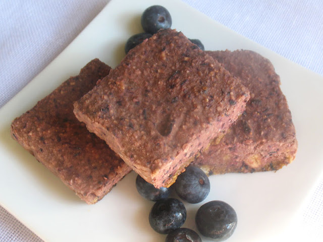 Raw Blueberry Bars