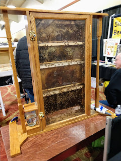 live bees buzz within a wooden and glass frame so they are visible at a booth at the 2019 Siouxland Garden Show in South Sioux City, Nebraska