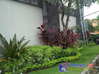 Tukang taman dan Kolam koi Surabaya