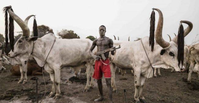 Fulani Herdsman Face 2-years for killing a farmer