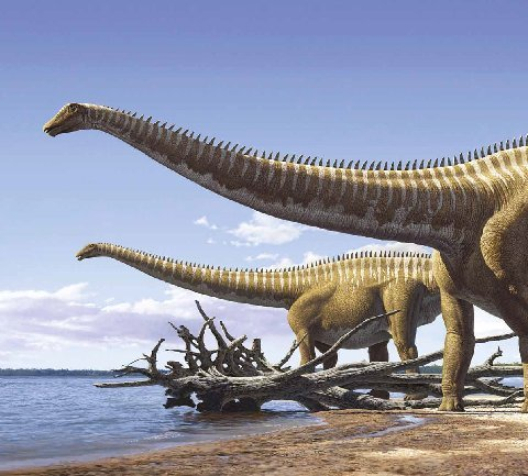 Love in the time of chasmosaurs dinosaur art it 39 s quite - Dinosaure diplodocus ...