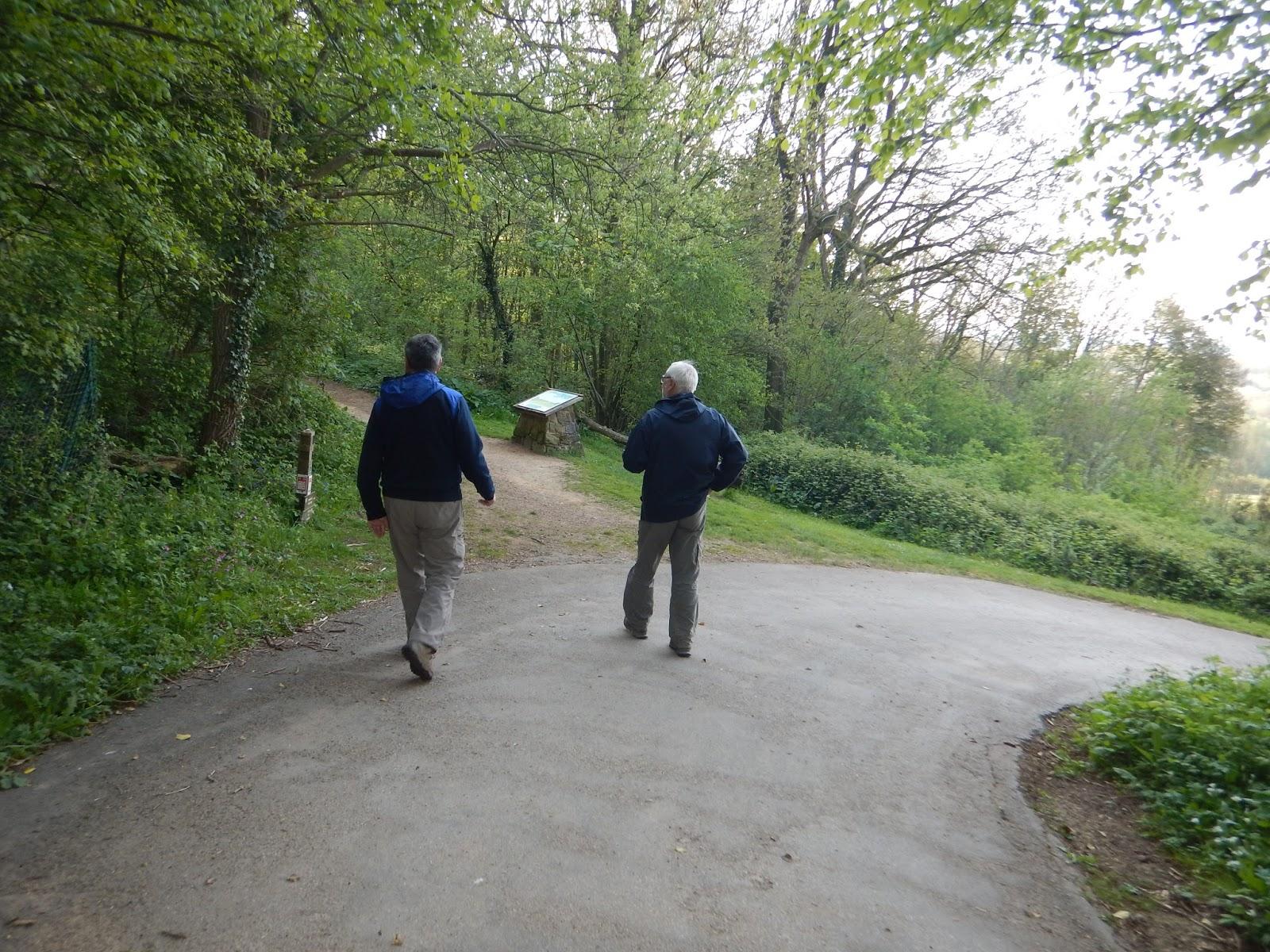 Rando Wardrecques: Monts de Flandre Parc Marguerite Yourcenar