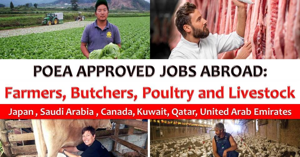 Poea Approved Jobs Abroad Farmer Butcher Poultry And