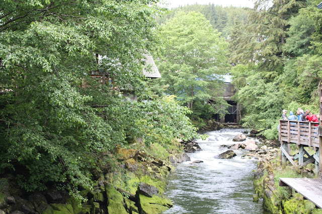 A walk along lovely Ketchikan Creek