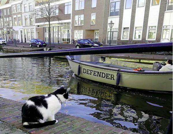 leiden boat tour