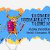 Rancangan Pengajaran Tahunan 2017