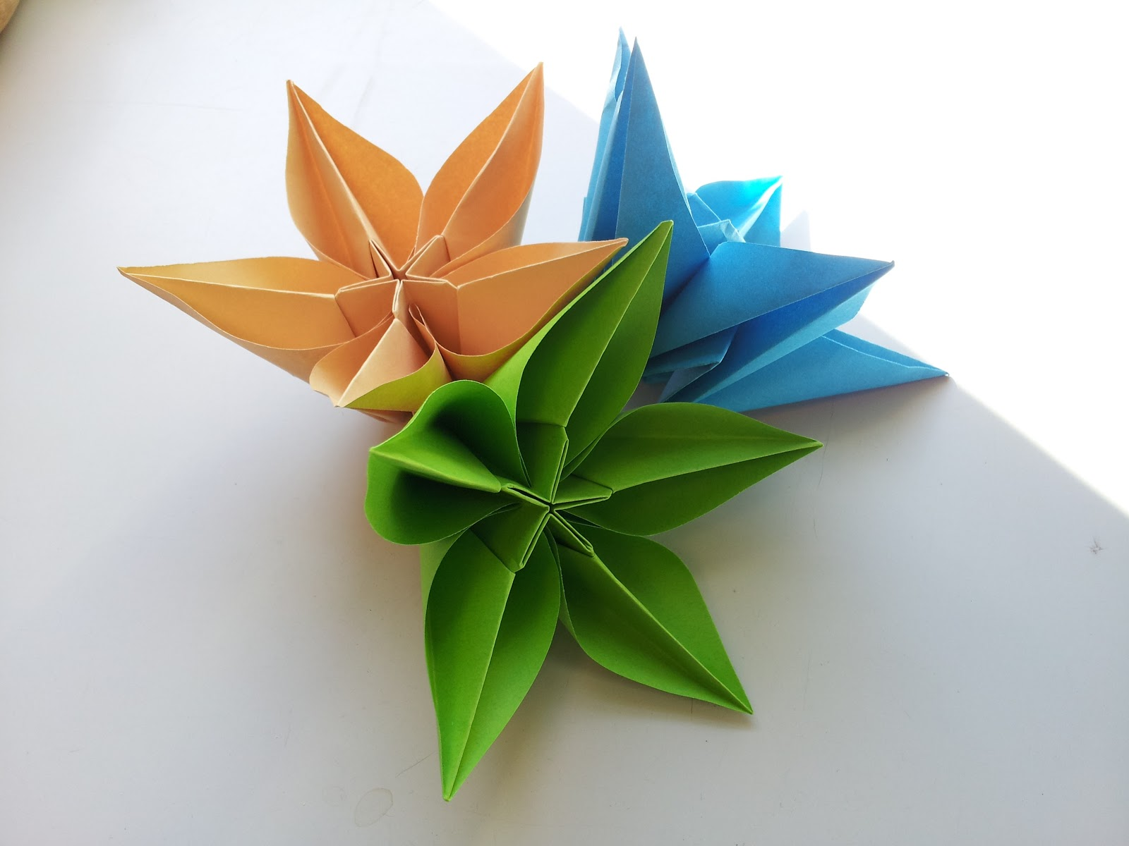 Carambola Flower Origami Diagram Stair Light Switch Wiring The Gallery For Gt How To Fold Rose Step By