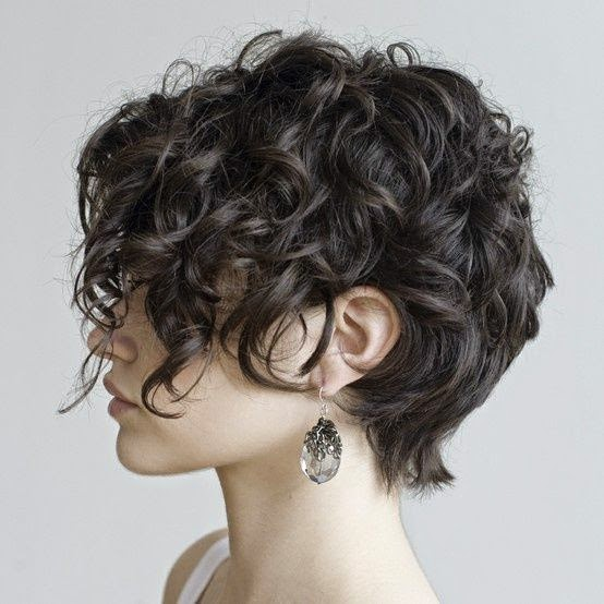 Short Curly And Sassy Hairstyles The Haircut Web