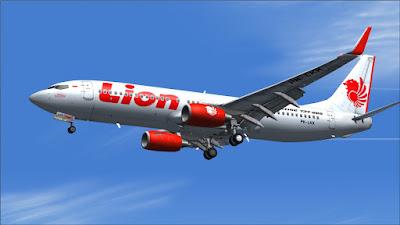 Lion Air, Penumpang Lion Air