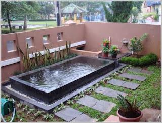 taman rumah minimalis dengan kolam ikan koi