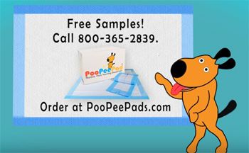 Pee Resistant Dog Bed