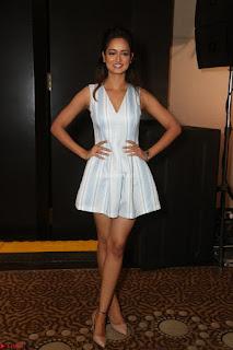 Shanvi Looks super cute in Small Mini Dress at IIFA Utsavam Awards press meet 27th March 2017 17.JPG