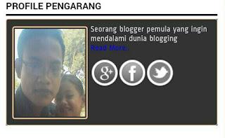 Cara Membuat Kotak Profile Pengarang Keren Diblog.